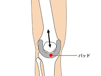 knee-img1-2